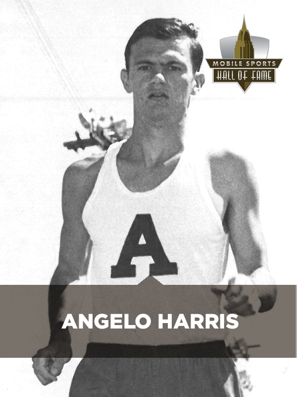 Angelo Harris